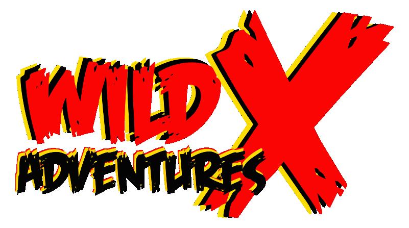 Logo800